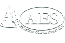 Remediation specialists in CT